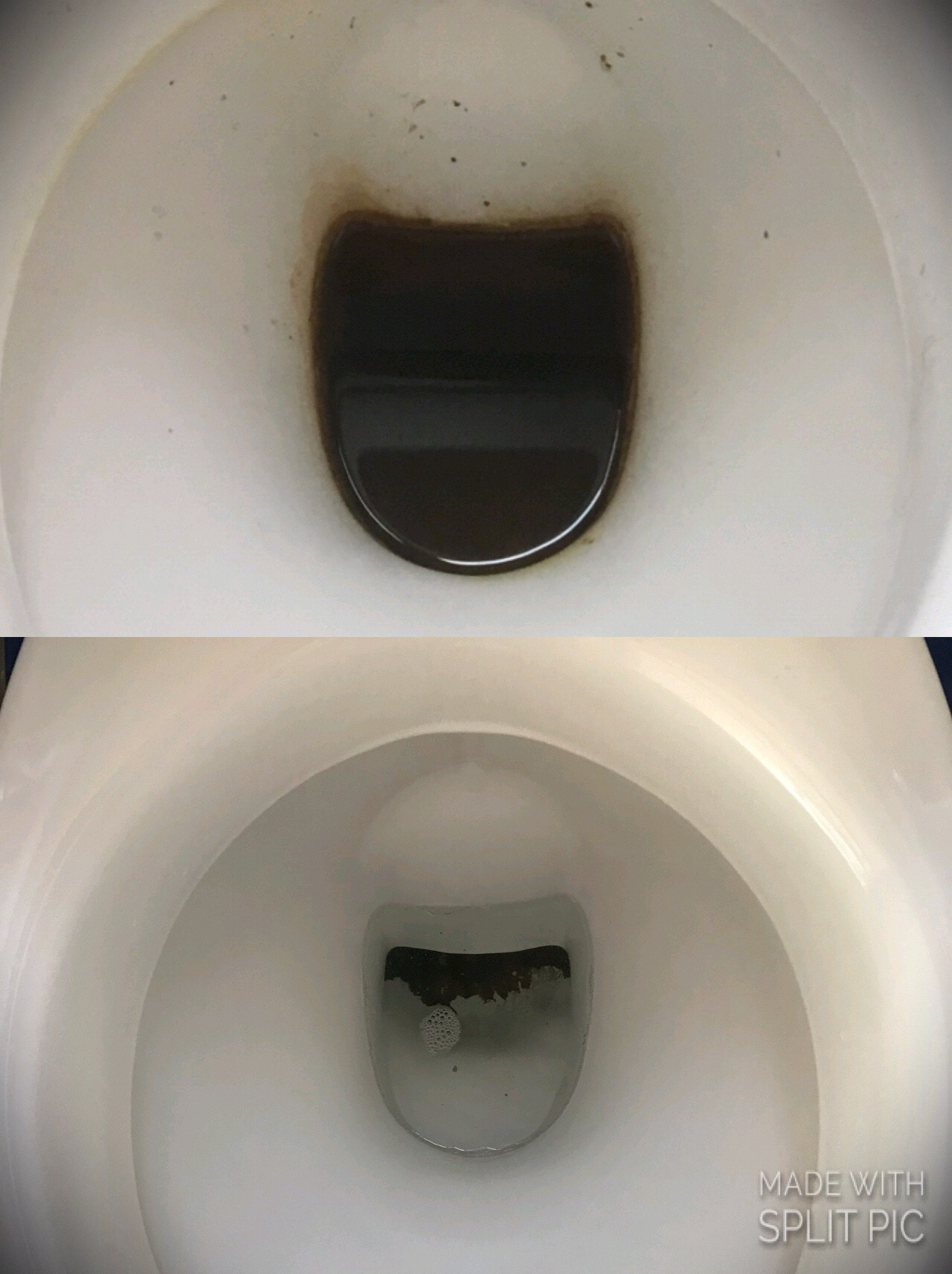 toilet before after 33 pierce