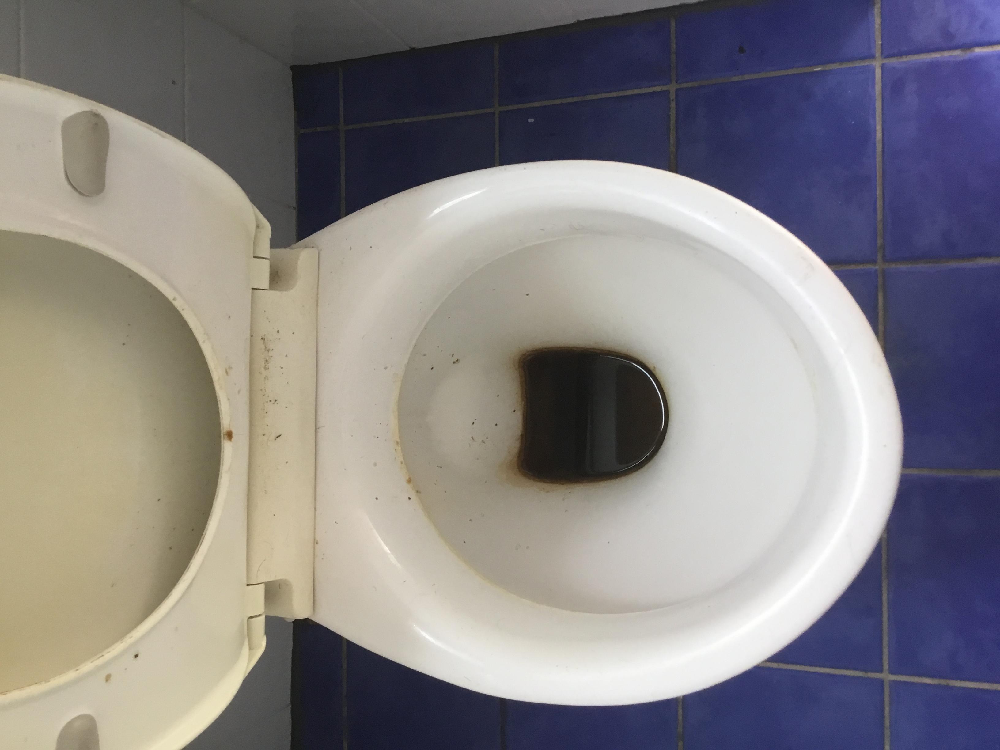 toilet before full pic